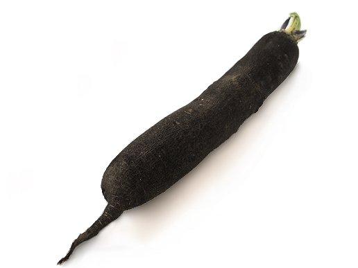 Radis aliments lexique - Cuisiner un radis noir ...