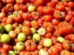 Tomates sur un marché de Palerme